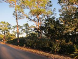 1452 Dogwood Drive - $120,000