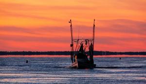 Shrimp boat on Apalachicola Bay