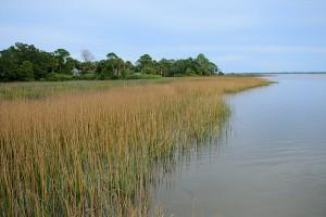 60+ acres on Blount's Bay - $250,000.