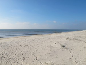 Gulf front lot on St. George Island - $549,000